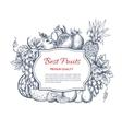 Best fruits harvest sketch poster vector image
