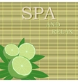 spa leaves and lime with text vector image