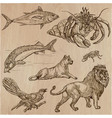 animals - an hand drawn pack line art vector image