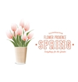 The tulip bouquet vector image