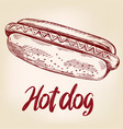 Hot dog fast foodhand drawn vector image