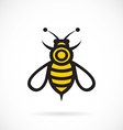 image of bee design vector image