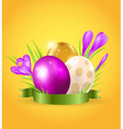 Easter card with eggs and violet crocuses vector image