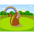Cartoon monkey and rural meadow with green grass vector image