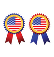 usa flag rosettes vector image