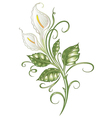 Lilies vector image
