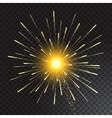 Festive Golden Firework Salute Burst on vector image