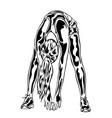 girl fitness sport activity silhouette vector image
