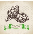 Hand drawn sketch artichoke vegetable Eco food vector image