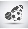 Sport Balls Icon vector image