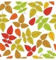 Colored seamless pattern on leaves theme Autumn vector image