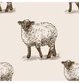 Sheep hand drawn sketch seamless pattern vector image