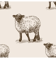 Sheep hand drawn sketch seamless pattern vector image