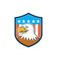 American Bald Eagle Head Smiling Flag Cartoon vector image
