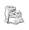 doodle sack of potatoes vector image
