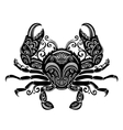 Ornate Sea Crab vector image