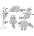 set of cute cartoon raccoons vector image