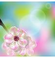 Spring flower vector image