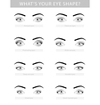 Various types of woman eyes set vector image