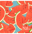 watermelon slices seamless vector image vector image