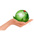 Green world and leaf have love bug in woman hand vector image
