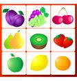 fruit number vector image