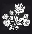 bush of roses flowers on chalkboard vector image