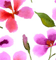 with orchid vector image