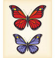Summer butterfly set vector