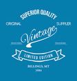 Vintage retro t-shirt typography vector image