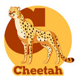 abc cartoon cheetah vector image