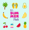 tropical summer beach decoration icon set vector image