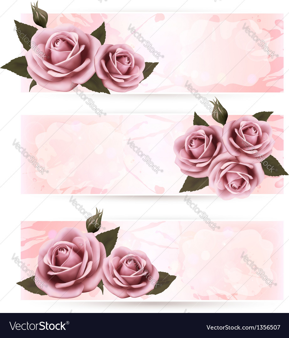 Set of holiday banners with pink beautiful roses vector