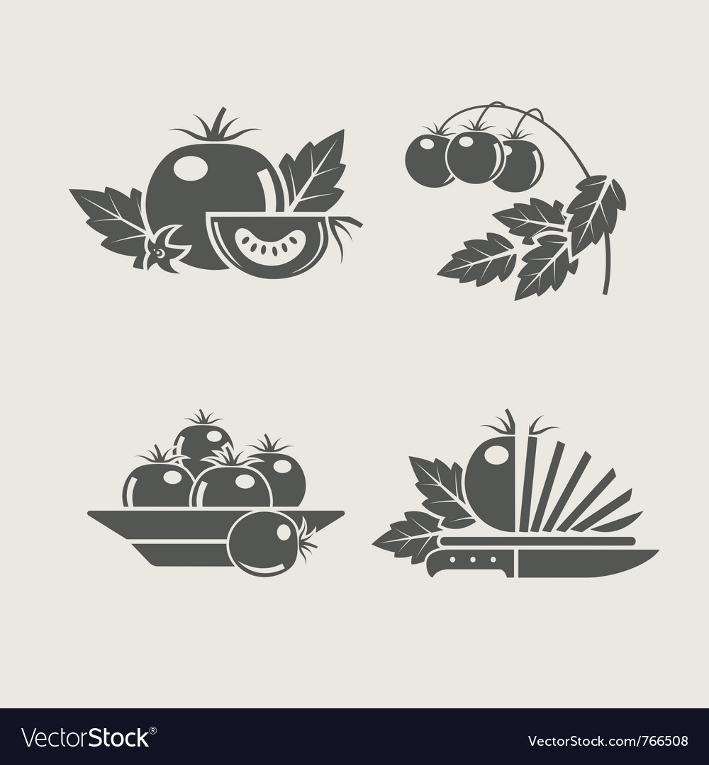 Tomato set icons vector