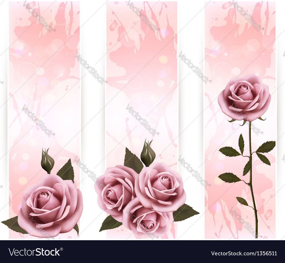 Three holiday banners with pink beautiful roses vector