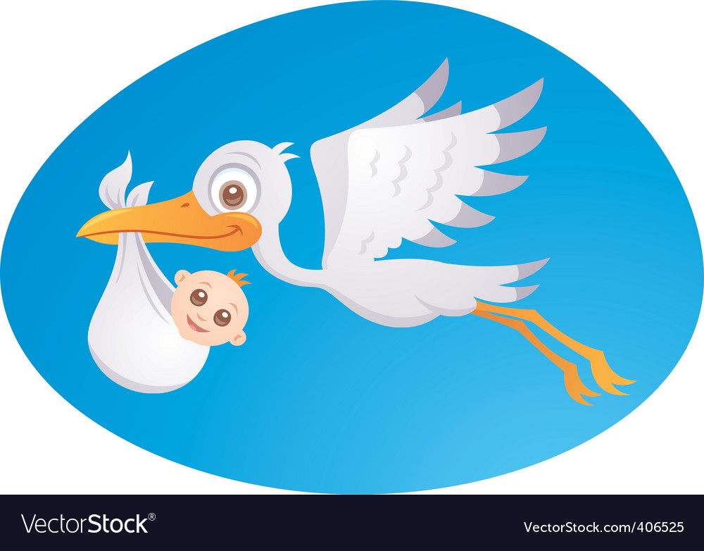Baby delivery stork vector