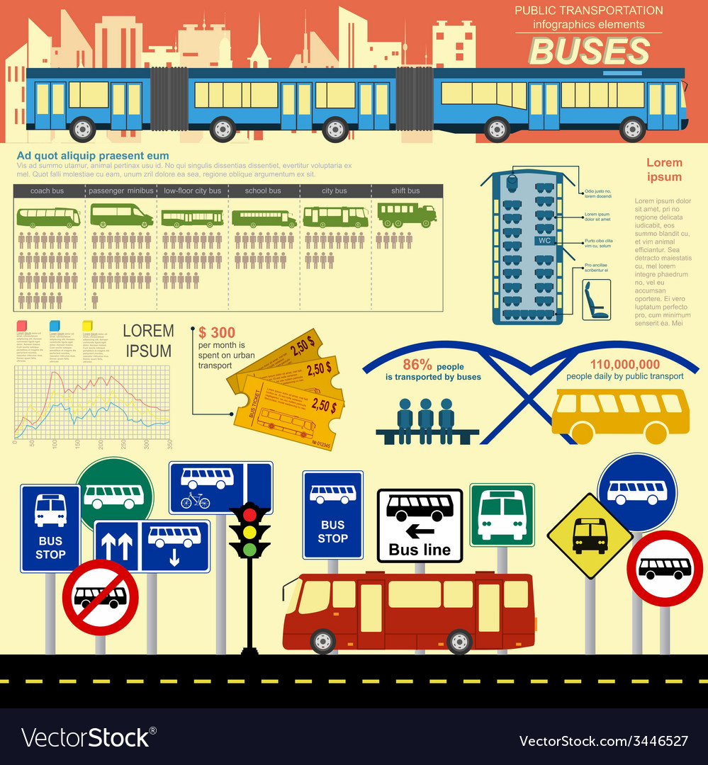 Public transportation ingographics buses vector