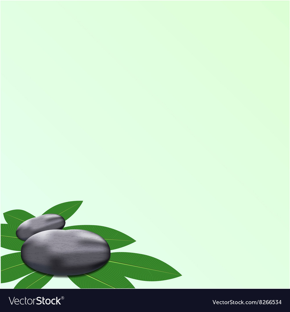 Spa leaves stone background vector
