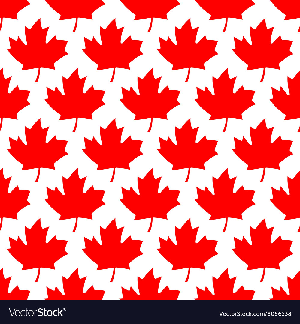 Seamless wrapping paper  red maple leafs vector
