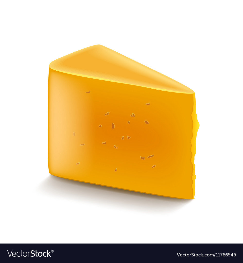 Cheddar cheese isolated on white vector