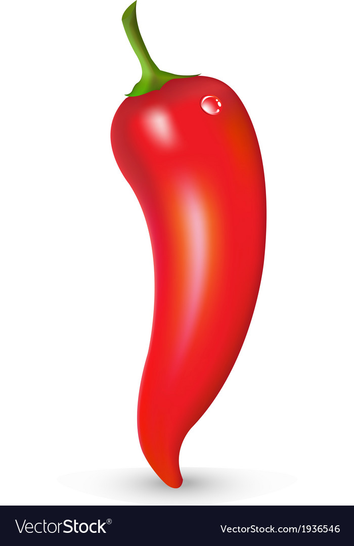Red hot pepper with drop vector