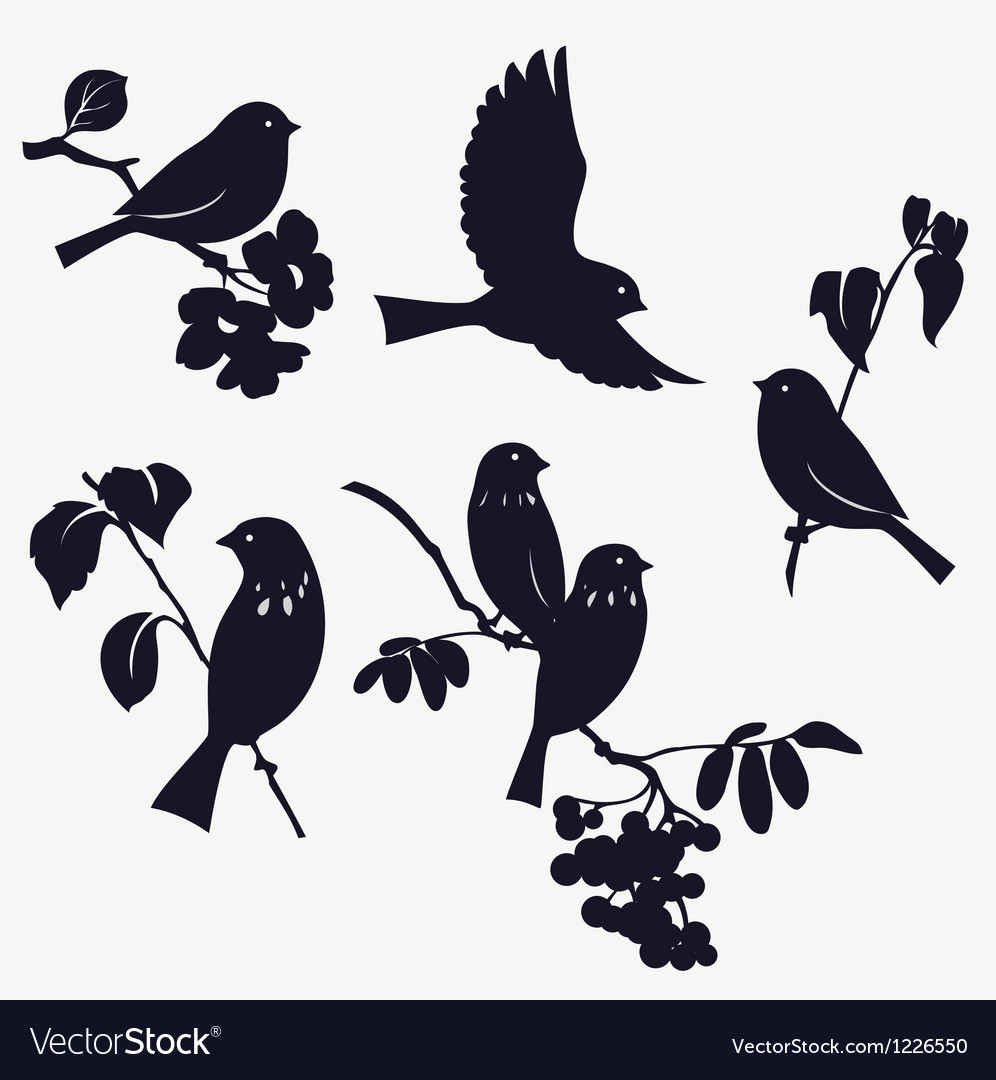Birds and twigs vector