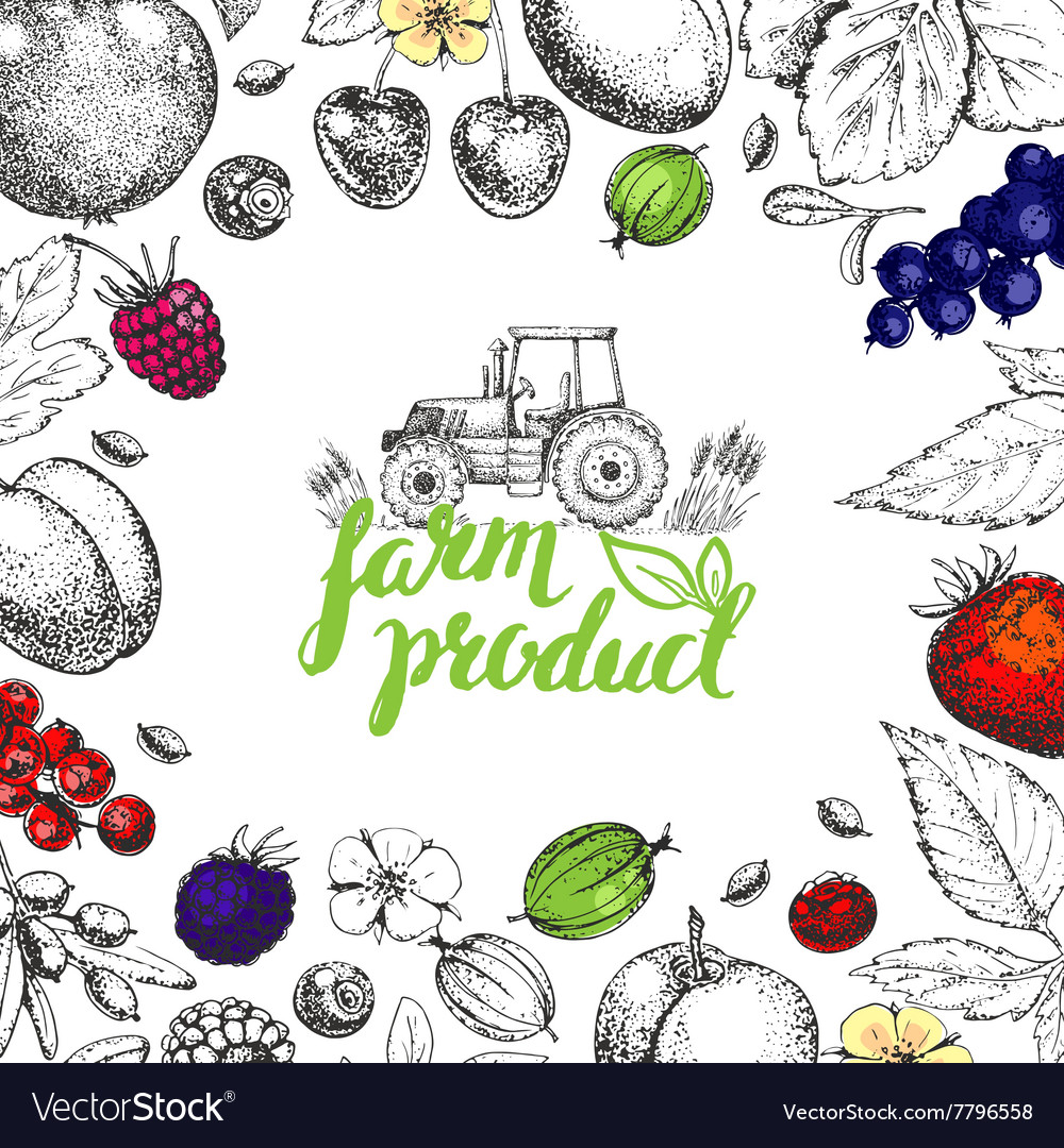 Food design template vector