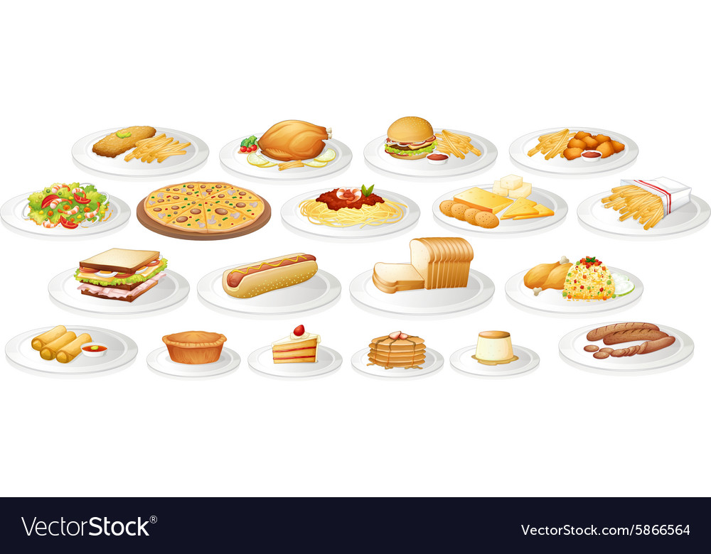 Different kind of food on plates vector