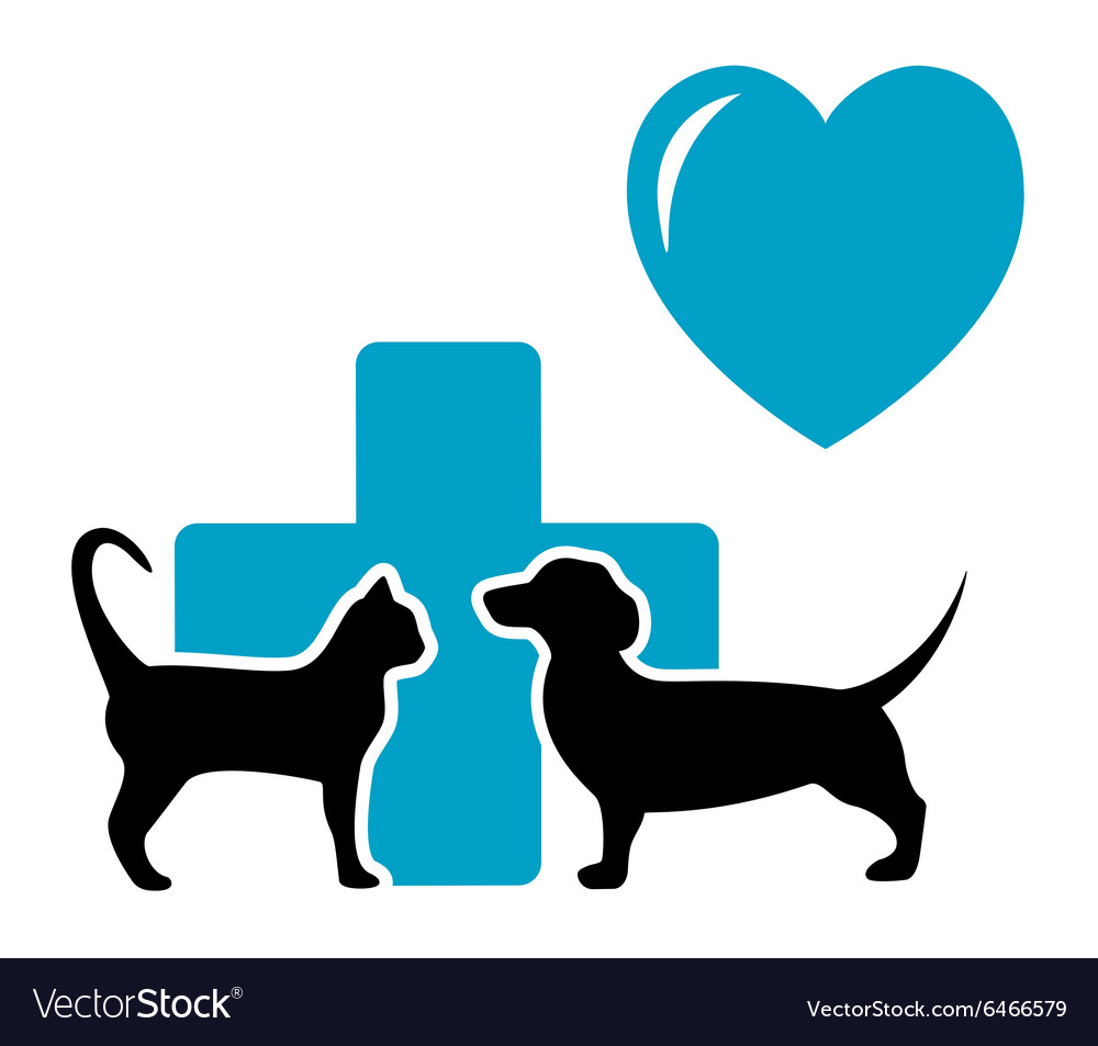 Veterinarian symbol with cat and dog dachshund vector
