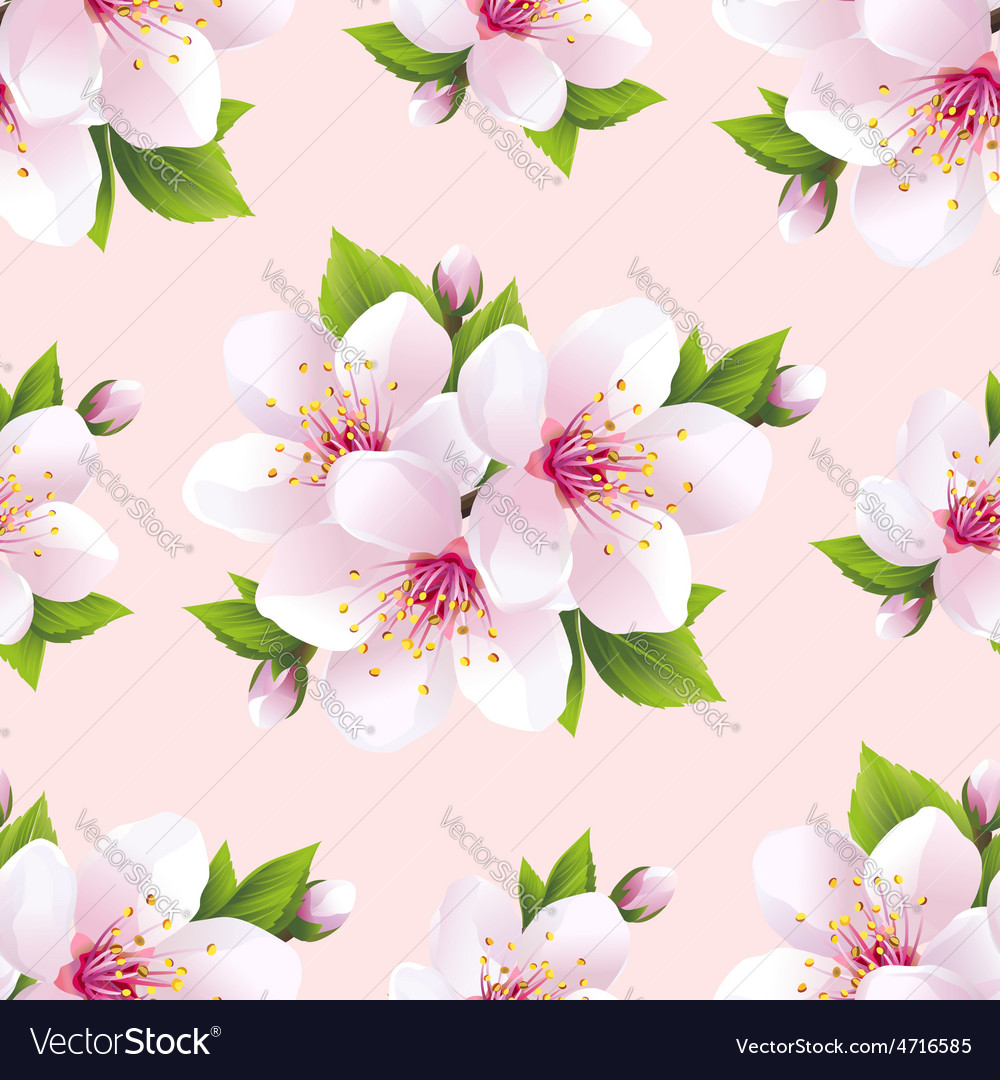 Nature seamless pattern with flowers sakura vector
