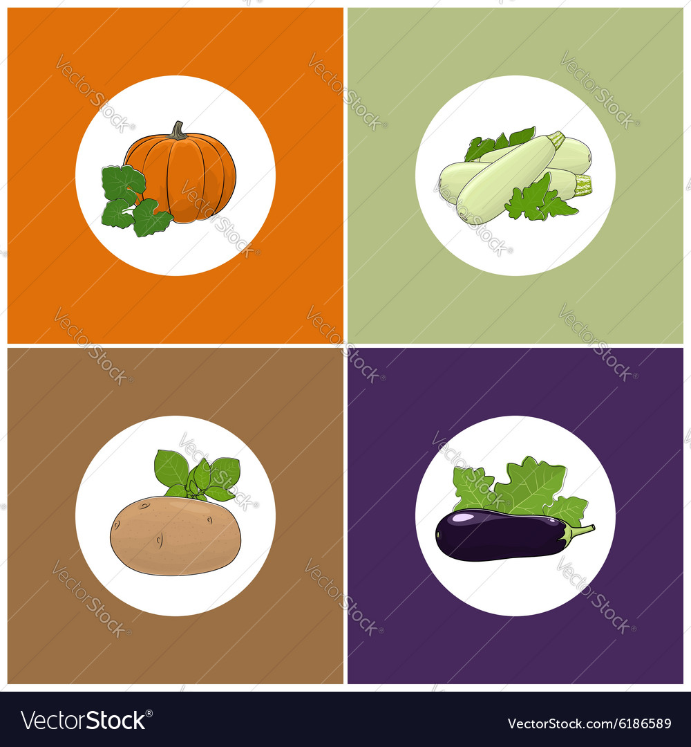 Set of four icons of vegetables vector