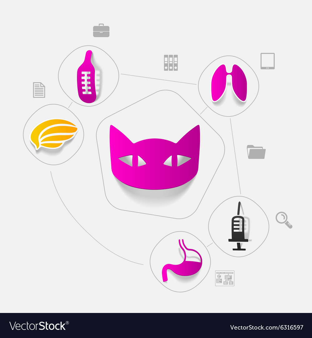 Veterinary sticker infographic vector