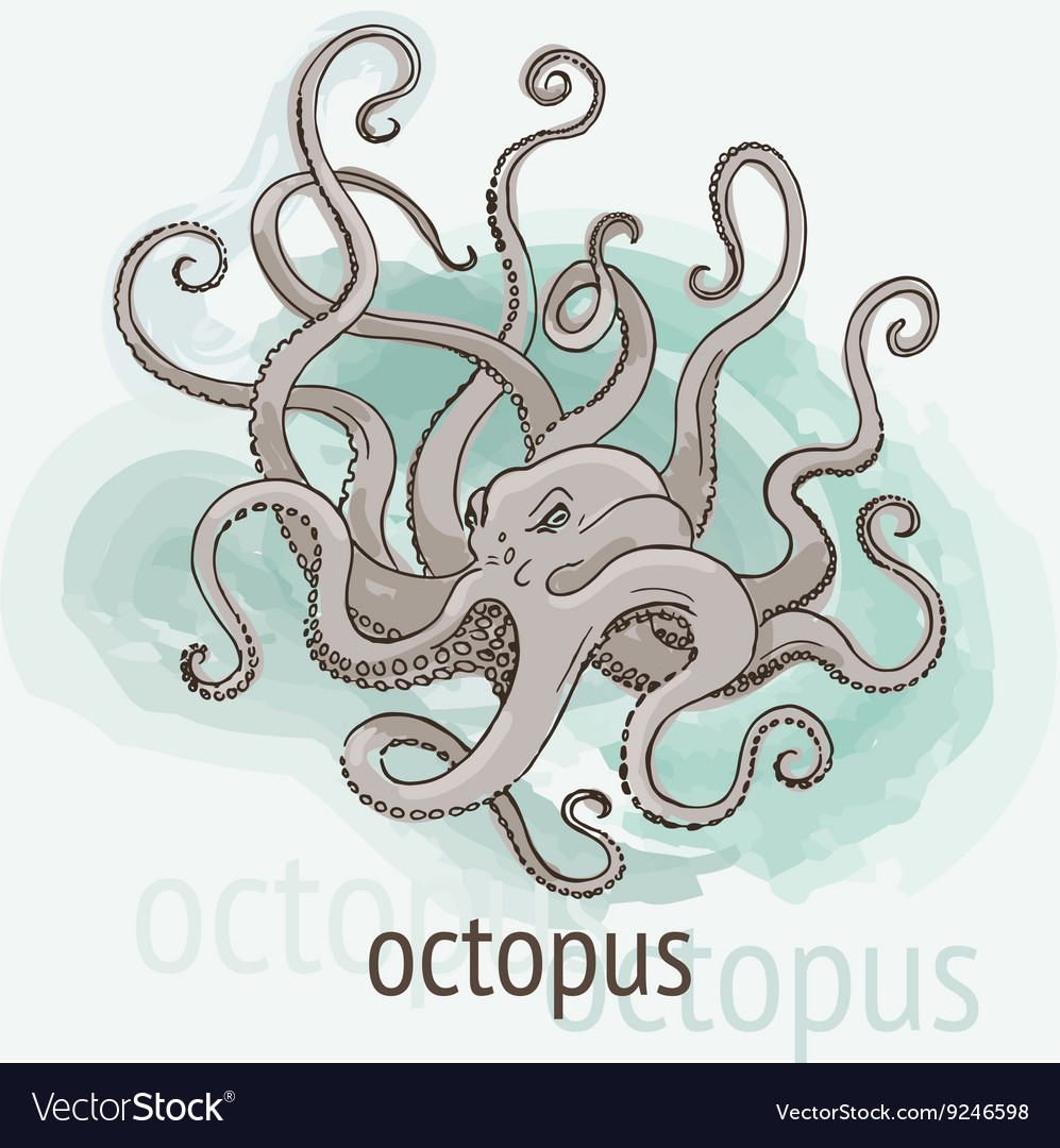 Octopus kraken watercolor vector