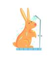 cute cartoon bunny rubbing himself a foam sponge vector image